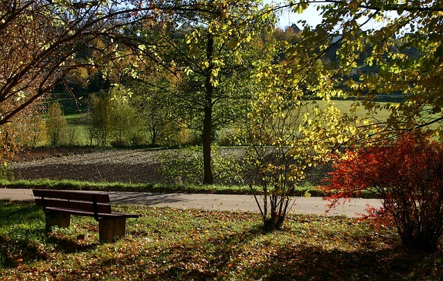 Gartenbank im Wald