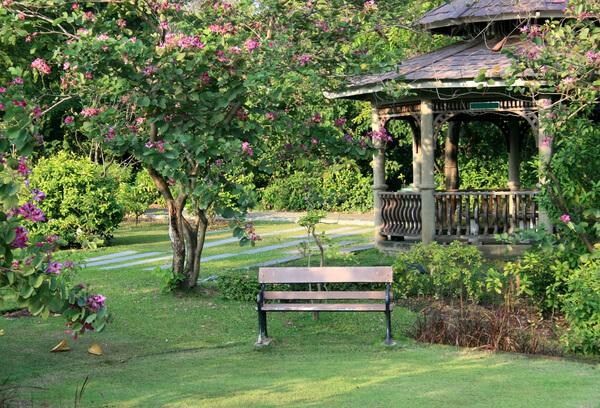 Bank im Garten im Hintergrund Bäume, Pflanzen und ein Pavillion