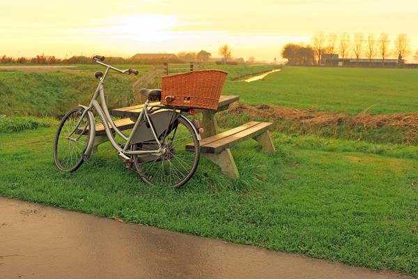 Fahrrad lehnt an Picknickbank